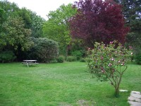 Oakhurst Bed & Breakfast - garden
